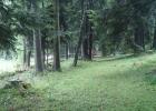 Camp d'été à Muriaux 2014 (Troupe)